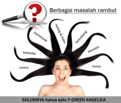 obat RAMBUT BOTAK, obat rambut rontok, green angelica